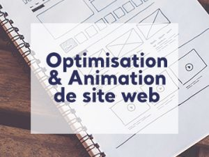 Administration de site web freelance nantes